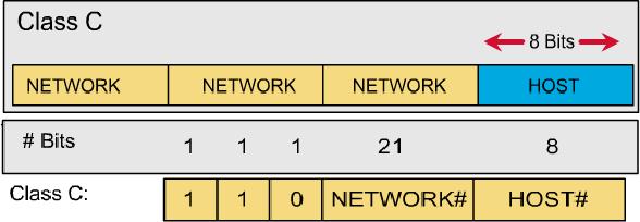 Cấu trúc địa chỉ lớp C