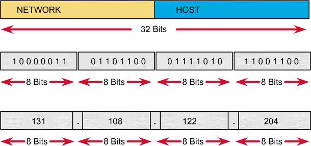 Cấu trúc địa chỉ IP